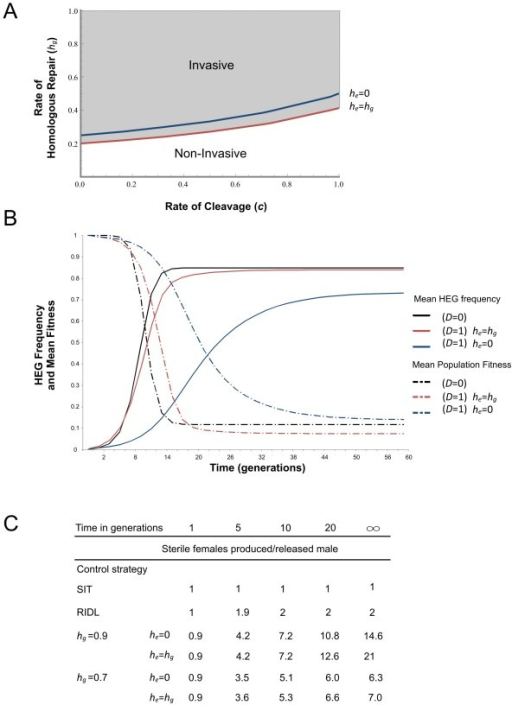 Population modelling of vasa-driven HEGs targeting female-specific genes. (A) and (B) HEG constructs targeting a somatic female gene for invasive vector control, (C) HEG constructs targeting a germline-specific female gene for non-invasive vector control. A) The threshold rate of homologous repair in the germline (hg) needed for the HEG to invade a population from low frequency, as a function of the overall rate of cleavage. Invasiveness of such a construct is defined as its ability to spread from rare through a population by virtue of genetic drive. The threshold differs depending upon the rate of homing in the embryo (he) (red vs. blue lines). Conversely, with no maternal deposition, the HEG will invade for any hg>0. (B) Frequency of the HEG and population mean fitness assuming c = 0.9, hg = 0.9, and an initial release frequency of 1%. Black line: no maternal deposition (D = 0); red line: maternal deposition in which homing rates in the embryo mirror those in the germline (D = 1; he = hg); blue line: maternal deposition in which all cut sites are repaired exclusively by non-homologous repair (D = 1; he = 0). (C) Number of sterile females produced per released male for the HEG-based non-invasive strategy proposed, compared to classical inundative control strategies. To be able to compare to classical measures constructs are released in homozygote males assuming c = 0.9 and for simplicity the models assume that on average one male mates once in his lifetime. c rate of cleavage); h (rate of homologous repair); D (maternal deposition).