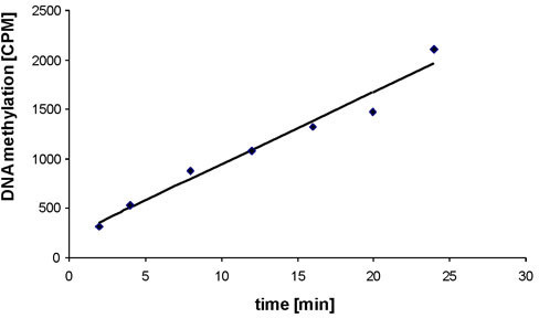 Methyltransferase activity of the purified Dnmt3a-C. Example of the methylation kinetics carried out with purified Dnmt3a-C. Initial slopes were determined by linear regression analysis of the initial linear parts of the reaction progress curves.