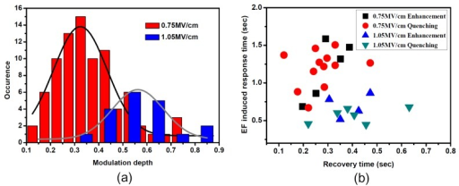 (a) Distribution of EF-induced fluorescence modulation depth for single SR molecules in PMMA at EFs of 0.75 MV/cm and 1.05 MV/cm, respectively; (b) Distribution of the transient response for field-induced fluorescence quenching molecules and field-induced fluorescence enhancement molecules under EFs of 0.75 MV/cm and 1.05 MV/cm, with the vertical axis being the EF-induced response time of fluorescence and the horizontal axis the recovery time of fluorescence when the EF is turned off.