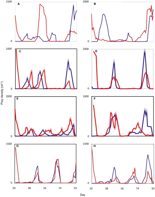 Representative prey population dynamics.Red and blue lines in each panel give prey dynamics in two patches linked by dispersal, starting from day 20 when dispersal was initiated. (a-d) Failure to achieve synchrony with a dispersal rate of 0.125% per event, (c) slow achievement of synchrony with a dispersal rate of 5% per event, (d) rapid achievement of synchrony with a dispersal rate of 5% per event, (e) failure to achieve synchrony with dispersal rate of 2.5% per event, (f) rapid achievement of synchrony which was subsequently lost with dispersal rate of 2.5% per event, (g-h) rapid achievement of synchrony with a dispersal rate of (g) 9% or (h) 12.5% per event. Compare c-f to Figure 1.