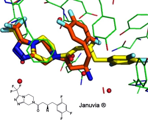 Small-molecule crystal structure colored in orange (carbon atoms) of Januvia® superposed with bound crystal structure of Januvia® colored in yellow (carbon atoms) complexed in DPPIV