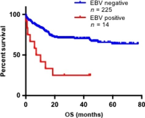 Overall survival (OS) in immunocompetent Epstein–Barr virus (EBV)-positive versus EBV-negative patients with diffuse large B-cell lymphoma. The median OS in EBV-positive patients was 8.7 months; OS could not be determined in EBV-negative patients. Hazard ratio = 3.9; 95% confidence interval, 4.0–49.3; P < 0.0001.