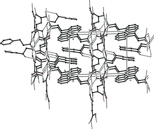 The crystal packing of the title salt viewed along the b axis. The hydrogen bonds are shown as dashed lines (see Table 1) and C-bound H atoms have been omitted for clarity.
