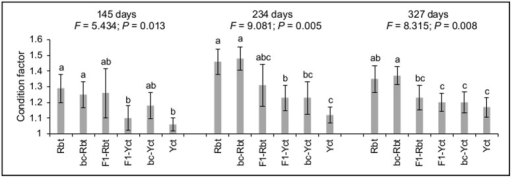 Mean condition factor (± SD) for each cross at each time point (145, 234, and 327 days post-fertilization).Results from PERMANOVA tests are shown (pseudo-F and P-value) and lowercase letters indicate significant differences (P < 0.05) in condition factor between crosses in post-hoc tests. Rbt = rainbow trout, bc-Rbt = first generation Rbt backcross (Rbt x F1), F1-Rbt = F1 hybrid with Rbt maternal lineage, F1-Yct = F1 hybrid with Yct maternal lineage, bc-Yct = first generation Yct backcross (Yct x F1), and Yct = Yellowstone cutthroat trout.