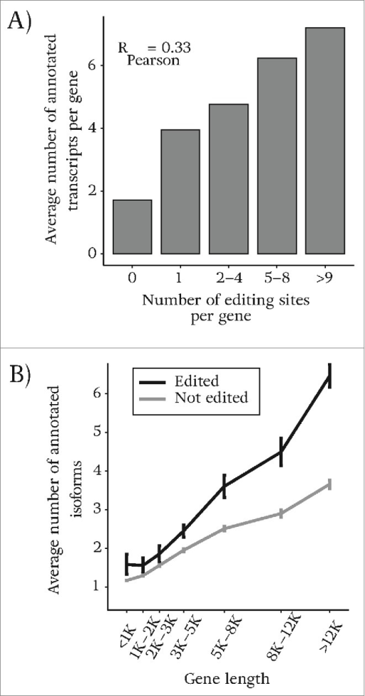 There is a positive correlation between genes that are targets of RNA editing and genes that are alternatively spliced. (A) The number of annotated isoforms vs. the number of predicted sites in our study. The number of detected sites is found to be greater in genes that express more annotated isoforms. (B) We group genes based on their length and compare the average number of annotated isoforms for genes of similar length between those that are edited and those that are un-edited genes. For genes with similar length, edited genes have a higher chance of being alternatively spliced.