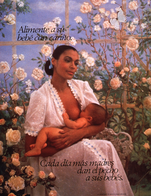 <p>Multicolor poster with black lettering.  Title in upper left corner of poster.  Visual image is a reproduction of a color photo in which a woman breastfeeds her baby.  It appears that the background for the photo is a screen painted with a trellis and white roses.  Caption at bottom of poster suggests that every day, more mothers choose to breastfeed.</p>
