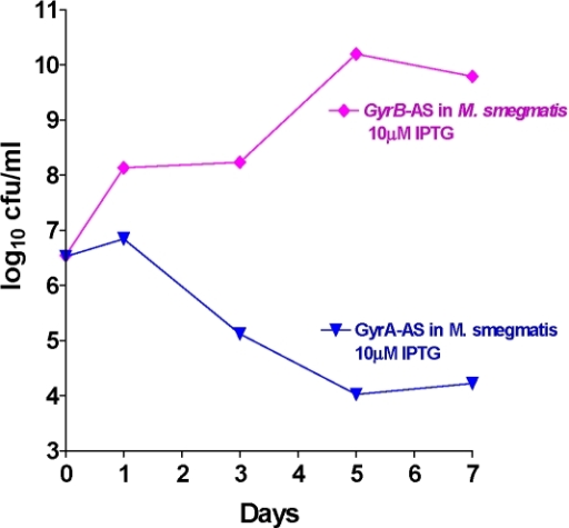 Survival kinetics of M. smegmatis (with M. tuberculosis gyrA-AS and gyrB –AS plasmids individually).Induction at 10 uM IPTG concentration. In the case of gyrA-AS r-M. smegmatis the cfu reduction is >3 log10 (bactericidal target), but gyrB-AS showed no cfu reduction as the orphan gyrB takes over once the other gyrB transcript is blocked.