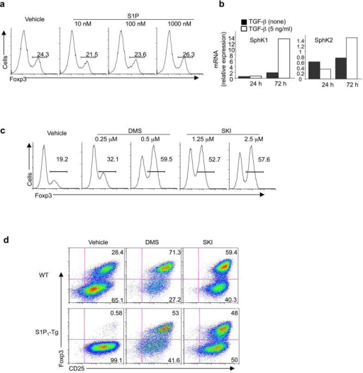 SphK activity regulates T cell differentiation(a) Analysis fo Foxp3 expression in wild-type cells treated with various concentrations of S1P in a serum-free medium. (b) Analysis of SphK1 and SphK2 mRNA expression in cells activated in the absence or presence of TGF-β. Levels in naïve T cells were set to 1. (c) Analysis of Foxp3 expression after naïve T cells were pre-treated with DMS or SKI, and activated under iTreg conditions for 5 days. (d) Analysis of Foxp3 and CD25 expression in wild-type and S1P1-Tg naïve T cells were pre-treated with DMS (0.25 μM) or SKI (2.5 μM), and activated under iTreg conditions for 5 days. Data represent three independent experiments.