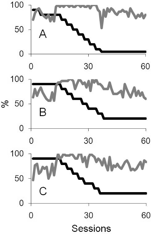A, B, and C represent the target contrasts and detection scores for targetspresented at the centre, left, and right of the display for the bilateralcase B2. In all plots, target contrasts are shown in dark lines and the greylines plot the detection score.