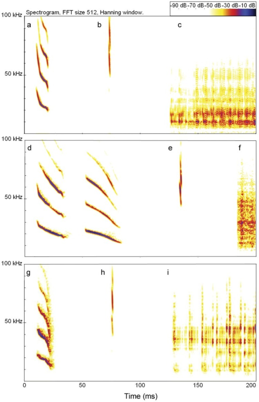 Spectrograms of calls from a common, white-winged, and hairy-legged vampire bat.Shown are a contact call (a), echolocation pulse (b), and portion of distress call (c) from a common vampire bat (Desmodus rotundus); double-note contact call (d), echolocation pulse (e), and portion of distress call (f) from a white-winged vampire bat (Diaemus youngi); contact call (g), echolocation pulse (h) and portion of a distress call (i) from a hairy-legged vampire bat (Diphylla ecaudata). Distress calls are often produced by captured bats.