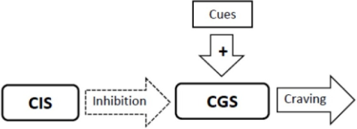 The Sensitization Homeostasis Model. The Craving Generation System (CGS) is a neural network that is responsible for generating craving for substances or experiences (the output from which is represented by the arrow labeled craving). The Craving Inhibition System (CIS) signals satiation by inhibiting the CGS. Smoking cues can stimulate craving by stimulating the CGS. The dashed outline on the inhibitory arrow indicates that the CIS system is inactive.