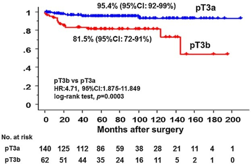 Recurrence-free survival. The recurrence-free 5-year-survival rate was 81.5% in patients with pT3b, and 95.4% in patients with pT3a. Significant difference was noted between the groups (P = 0.0003, HR: 4.71, 95% CI: 1.875–11.849). pT3a, distance of extramural extension ≤5 mm; pT3b, distance of extramural extension >5 mm.