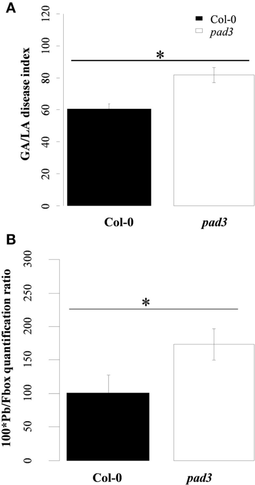 (A) Clubroot symptoms and (B) quantification of Plasmodiophora brassicae DNA in infected roots of the clubroot susceptible WT Col-0 and pad3. (A) Clubroot symptoms were evaluated using the GA/LA disease index calculated by image analysis at 21 dpi. GA/LA is the ratio between gall area (GA in cm2) and an estimation of the rosette extent (LA in cm2). Error bars represent standard error (Four biological replicates, six plants per biological replicate). (B) Pathogen DNA quantification (Pb) by qPCR, expressed as a ratio relative to the expression level of the plant Fbox gene, at 21 dpi (Four biological replicates, six plants per biological replicate). Asterisks indicate statistically significant differences according to the Wald tests applied on a linear mixed model (P < 0.05).