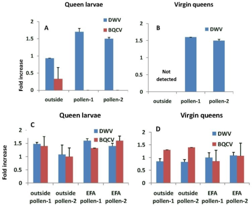 Fold increase in deformed wing virus (DWV) and Black queen cell virus (BQCV) titers relative to the nurse bees sampled while tending queen cells. (A) and (B) are from queens reared from grafts of larvae from outside colonies and reared in either outside colonies or those in an enclosed flight area fed pollen-1 (chlorpyrifos) or pollen-2 (chlorpyrifos with added Pristine®). (C) and (D) are from larvae grafted from and reared into queens in colonies fed pollen-1 or 2 or reared in outside colonies. Estimates of virus titers were made from 3 queen larvae and 3 virgin queens in each treatment group with the exception of outside larvae that were reared in colonies fed pollen-2 where two virgin queens were analyzed. Estimates of virus titers in nurse bees were based on samples of 9–15 bees per treatment group.