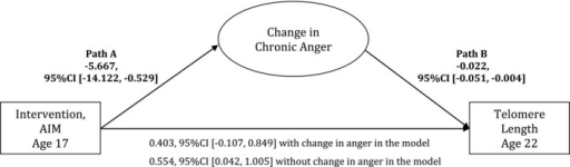 A mediational model of intervention status, change in chronic anger, and later telomere length. A mediational model of intervention status, change in anger from baseline to follow‐up, and telomere length at age 22 with socioeconomic‐related risk and gender controlled. Unstandardized coefficients are presented. Analyses were performed in the sample of participants with high nonsupportive parenting exposure at baseline and with the GG genotype, as they were most sensitive to the environments (N = 50). Indirect effect = 0.128, 95% CI [0.001, 0.470].