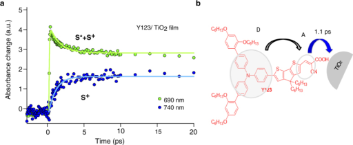 Comparison of the kinetics observed in the Y123 sensitized TiO2 film at different wavelength regions of 690 nm and 740 nm and Y123 molecular structure.(a) Transient absorptance of Y123 sensitized TiO2 films at 690 nm (green) and 740 nm (blue). The formation of the blue trace measured at 740 nm, which reflects the electron injection time, is occurring in picosecond time scale and is fitted with an exponential growth function with a time constant of 1.1 ps. (b) Y123 molecular structure and schematic of electron transfer processes. Blue arrow shows the electron injection process.