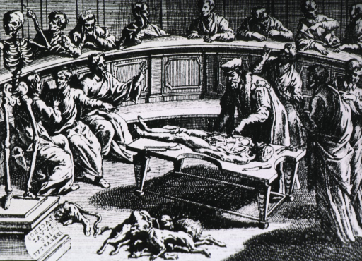<p>Interior view of an anatomical theater in which a dissection is in progress; a surgeon is examining the cadaver; several men are sitting, and a few are standing, observing the proceedings. A skeleton stands to the left.</p>