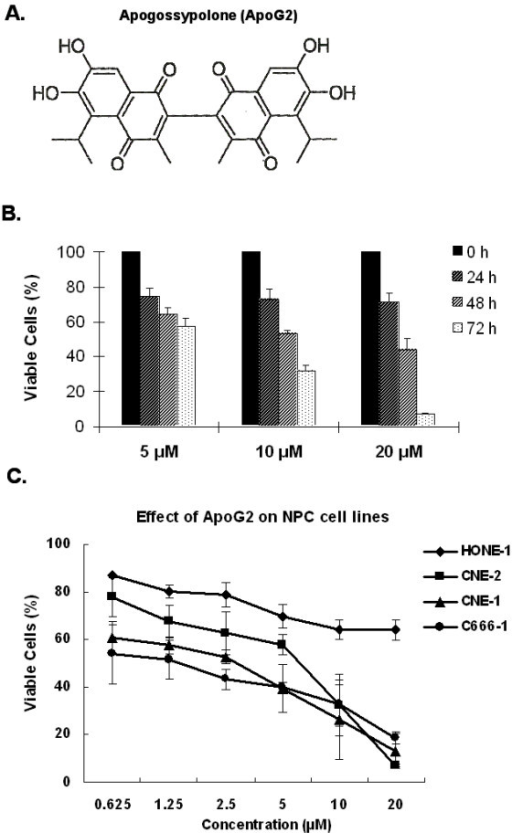 ApoG2 and its inhibitory effect on CNE-2 cell proliferation. (A) The chemical structure of ApoG2. (B) Effect of ApoG2 on NPC cell survival. Cells were exposed to 5, 10, and 20 μM ApoG2 for 24, 48, and 72 h. Compared to control cells (treated with 0.1% DMSO), percentage of viable cells in treated samples was measured using an MTT assay (mean ± standard deviation for three experiments). (C) The inhibitory effect of ApoG2 on four NPC cell lines (HONE-1, CNE-2, CNE-1 and C666-1) was compared after 72-hr treatment. Points, average of three experiments; bars, SD.