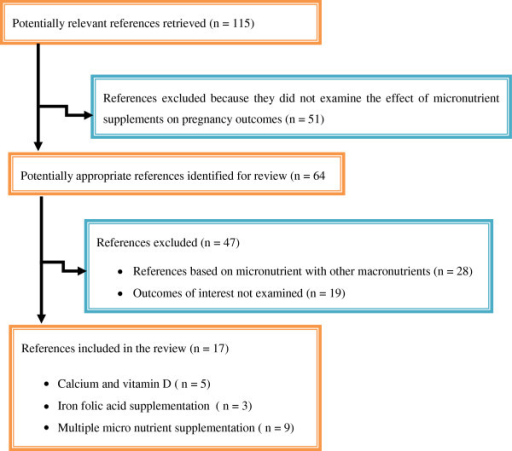 Selection of studies included in systematic review of randomized controlled trials and observational studies on maternal multiple micronutrient supplementation and pregnancy outcomes.