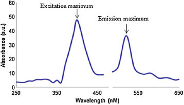 Photoluminescence spectra of selenium nanoparticles synthesized using leaf extract[[55]].