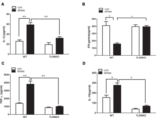 A deficiency of TLR9 decreases chronic stress-induced changes of pro-inflammatory cytokine levels by macrophages TLR9 knockout mice or wild type BALB/c mice aged 6 to 8 weeks were subjected to a 12 h physical restraint daily.After 2 d stress, mice were sacrificed by cervical dislocation, and the macrophages were harvested, purified and cultured (5 × 105 cells/well) on culture plates for 24 hours. IL-1β, TNF-α, IL-10 and IFN-γ levels were measured in supernatants of macrophages by ELISA kit. Means and SEs were calculated from 7 mice per group. *p < 0.05, **p< 0.01 compared with indicated groups.