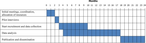 Gantt diagram of study timescale. The figure represents how the five main phases of the study are organised in the 2-year project.