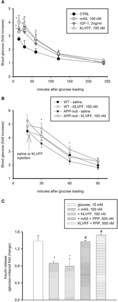 Peripheral effects of Aß1−42 monomers. (A) Aß1−42 monomers transiently increased blood glucose levels in CD1 male mice undergoing a glucose tolerance test (GTT). This effect was mimicked by the Ac-KLVFF-NH2 peptide and by IGF-1. Fasted mice were i.p. injected with either Aß1−42 monomers (mAß), KLVFF monomers or IGF-1 5 min before glucose loading (2 g/kg). Plots represent the fold increase of glucose levels over basal in 4 animals per experimental condition. *Significantly different from control (CTRL) at p < 0.05 (One-Way Anova + Fisher's LSD test). Data are from one experiment repeated three times with similar results. (B) Ac-KLVFF-NH2 monomers sustained the rise in blood glucose levels in APP- mice undergoing GTT. Mice, either C57BL/6J (WT) or APP-, were i.p. injected with the Ac-KLVFF-NH2 peptide 15 min after glucose load. *Significantly different from APP--saline at p < 0.001 (n = 4–10 animals/group, One-Way Anova + Fisher's LSD test). (C) Aß1−42 monomers reduced glucose-stimulated insulin release in pancreatic INS-1E cells. This effect was mimicked by the Ac-KLVFF-NH2 peptide and was prevented by the IGF-IR antagonist, PPP. Data, representative of three experiments, are fold change of glucose-stimulated insulin release. Significantly different from the 15 mM glucose condition (*), or the respective controls (#) at p < 0.05 and (One-Way Anova + Fisher's LSD test).