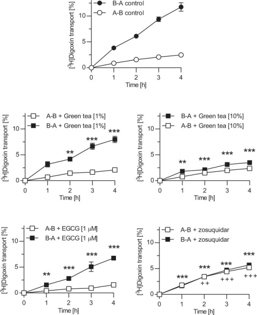 Effect of green tea and EGCG on transepithelial transport of digoxin across Caco-2 monolayers.Digoxin (5 μM) was applied to the basal or apical compartment, and percentage of digoxin transported in the opposite compartment at defined time points was measured. Experiments were conducted in the absence of an inhibitor (top) or in the presence of green tea (1% (v/v) and 10%), EGCG (1 μM) or the P-glycoprotein inhibitor zosuquidar (1 μM). Data are expressed as mean ± S.E.M. A-B apical to basal translocation, B-A basal to apical translocation; **/++ p<0.01, ***/+++ p<0.001 vs. corresponding control without inhibitor.