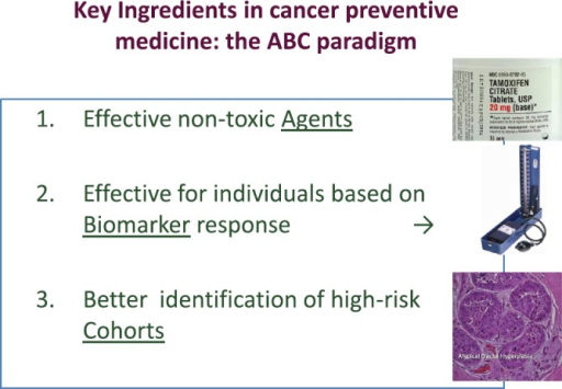 Key elements for cancer prevention: the ABC paradigm. (From De Censi A, Discussion abstract LBA504, ASCO June 5, 2011 [51].)