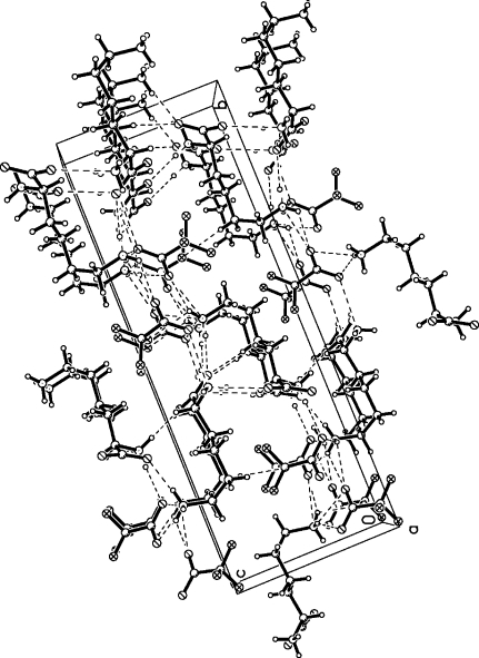 The crystal packing of (I), viewed along the a axis. Hydrogen bonds are shown as dashed lines.
