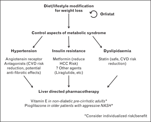 Evidence-based schematic for treatment of nonalcoholic steatohepatitis using currently available agents.