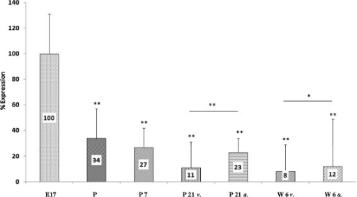 SCN8A mRNA expression. Highest expression of SCN8A mRNA was observed on day 17 of gestation and progressively declined after birth. Lowest levels of SCN8A mRNA were measured at age 6 weeks (Abbreviations and levels of significance as depicted in Figure 1).
