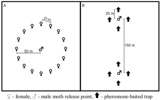 Generalized plot layout for the short- and long-term pheromone persistence (A) and pheromone persistence between two climate regimes (B) experiments.