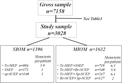 Flowchart of the subjects of this study showing mean tests per patient and mean recording numbers. Abbreviations: Br-SCEP, cord evoked potential after stimulation to the brain; MIOM, multimodal intraoperative monitoring; SIOM, single-modality monitoring; Sp-SCEP, spinal cord evoked potential after stimulation to the spinal cord; SSEP, somatosensory evoked potential; Tc-MEP, transcranial electrical stimulation motor evoked potential.