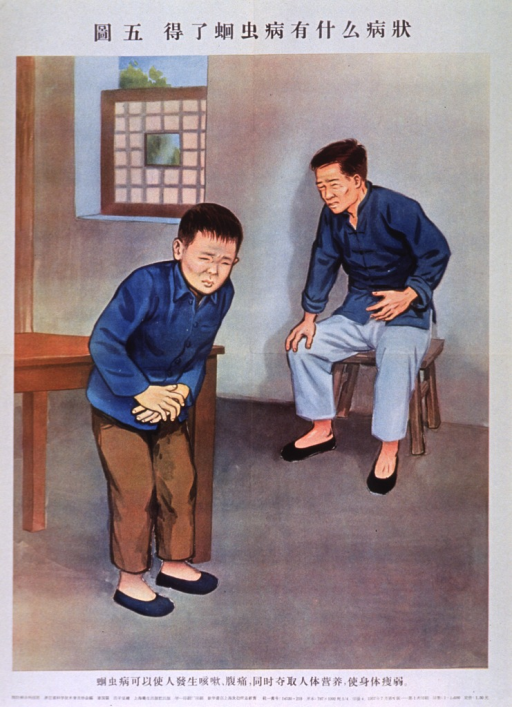 <p>Predominantly white poster with black lettering.  All lettering appears to be in Chinese characters.  Visual image is a color illustration of a boy and a man who are both doubled over and clutching their lower abdomens, as if in pain.</p>