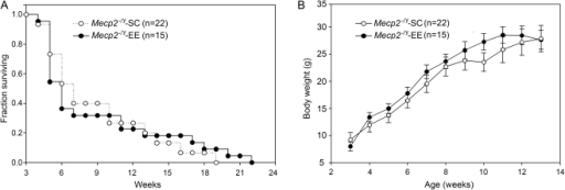 Environmental Enrichment does not modify life span or body weight of Mecp2−/y mice.A, Kaplan-Meier plots showing the survival of Mecp2−/y-SC (open circles) and Mecp2−/y-EE (closed circles) since the initiation of the enrichment period. B, Growth curves of mice showed in A. The body weights of Mecp2−/y mice, irrespective of housing conditions, dropped abruptly after 14 weeks and were therefore not included in the graph. Data represent mean ± SEM. The total number of animals in each group is shown (n). No significant differences were found between Mecp2−/y-SC and Mecp2−/y-EE according to ANOVA tukey test.