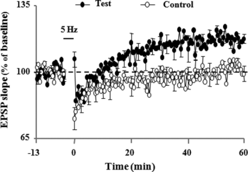 Pharmacological inhibition of intracellular Ca2+ stores by cyclopiazonic acid (CPA; 3 μM) led to LTP induction by a low-frequency (5 Hz, 900 pulses) stimulation protocol. Illustrations of the time course of mean percentage change in the synaptic responses during 10 min before and 60 min after delivery of 5 Hz stimulation (5 Hz/3 min, solid horizontal line) to the control and test path. LTP is observed only in test path (adapted from Kumar and Foster, 2004).