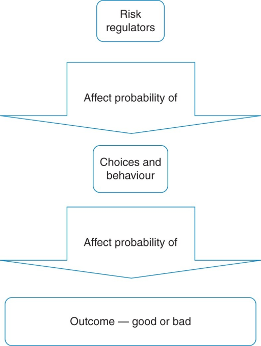 A simple model of risk regulator link to outcome.