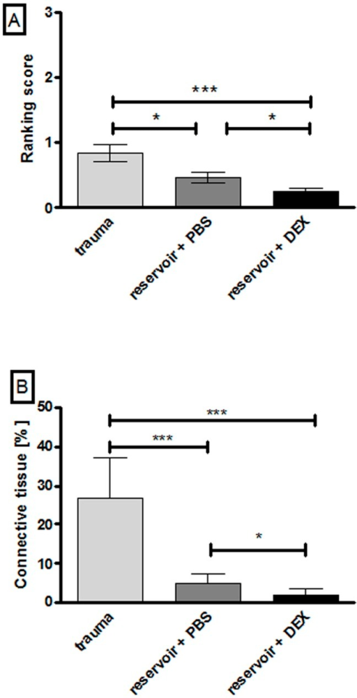 Graphed t-test results of tissue growth ranking (A) and measurement (B) for the whole cochlea length.Using both evaluation methods the tissue growth in the trauma group was significantly increased compared to the reservoir and DEX group with a p value <0.001. When applying the ranking score the difference between reservoir + PBS and trauma or reservoir + DEX was significant with p<0.05 (A). Comparing the tissue growth of the reservoir + PBS group with those of the trauma group or the DEX group using the measuring method, the p value is <0.001 (PBS vs. trauma) and <0.05 (PBS vs. DEX). Error bars: SEM. * = p<0.05, *** = p<0.001.