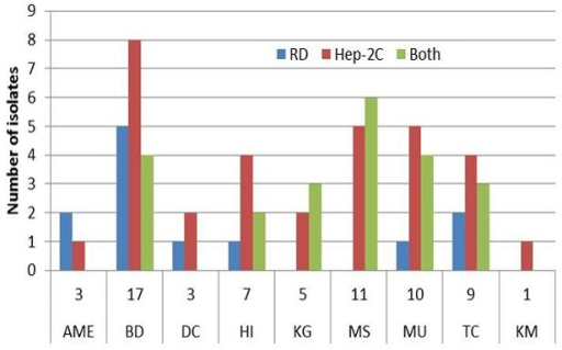 Number of isolates positive on different RD and Hep-2C cell lines by school