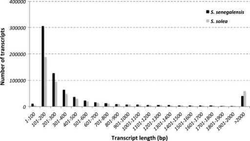 Representation of transcript abundance with respect of their lengths in theS. senegalensis(dark) andS. solea(grey) transcriptomes.