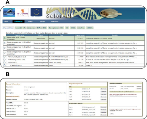 "Screen captures of SoleaDB interface. A, illustration of the ""Assemblies"" tab containing all information about all transcriptome versions and subversions. B, capture of the part of the screen corresponding to the ""Assembly info"" tab where general information about the transcriptome as well as downloadable files and other useful tools can be found."