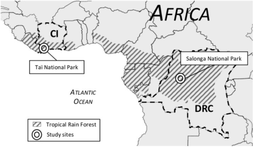 Rainforests In Africa Map.Map Of Western Central Africa Showing Location Of Study Open I