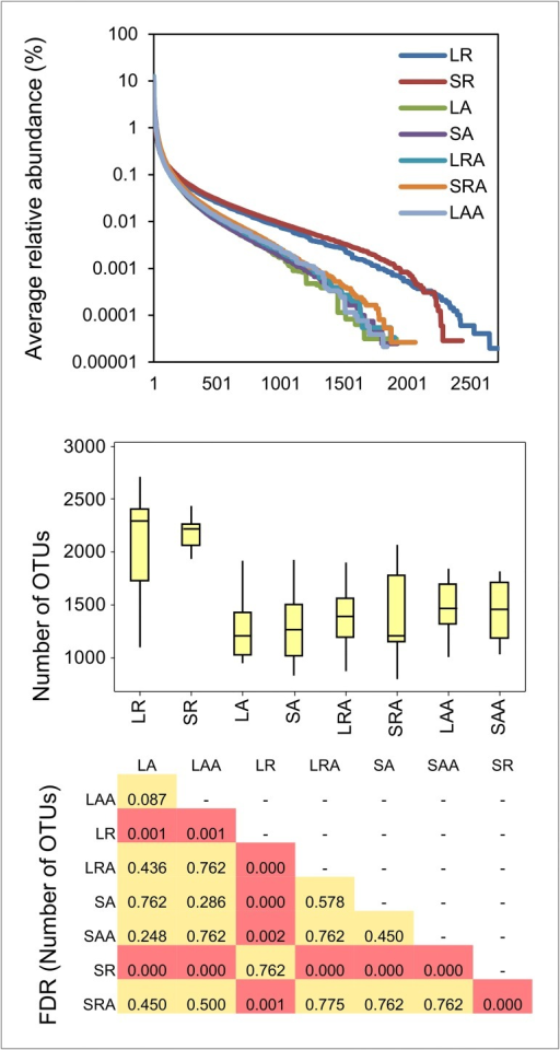 Difference between diversity of OTUs in rumens of restricted and ad libitum treatment groupsLR = Liquid Restricted (n = 14), SR = Solid Restricted (n = 14), LA = Liquid Ad lib (n = 13), SA = Solid Ad lib (n = 13). Line plot (top panel) shows an increase in group R relative to the other groups, in the average number of OTUs for which the relative abundance <0.1%. Box and whisker plot shows median, quartiles and maximum and minimum values of the sums of the number of OTUs identified within in each sample. P-values are BH-corrected and derived from Wilcoxon pairwise comparisons of number of OTUs between different treatment groups.