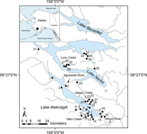 Map Showing Sampling Localities In Lake Aleknagik And L Openi - Us river system map