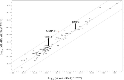 Investigation of the expression of genes involved in cell–cell and cell–matrix interactions using a PCR array.The graph shows the fold changes of gene expression in IL-1Ra and control siRNA-transfected Ca9-22 cells. MMP-13 was up-regulated in IL-1Ra siRNA-transfected cells by 4.8-fold (n = 6). The red circle (most up-regulated gene) indicates MMP-13 expression in the graph. TIMP-1 and TIMP-2 expression levels are indicated by arrows.