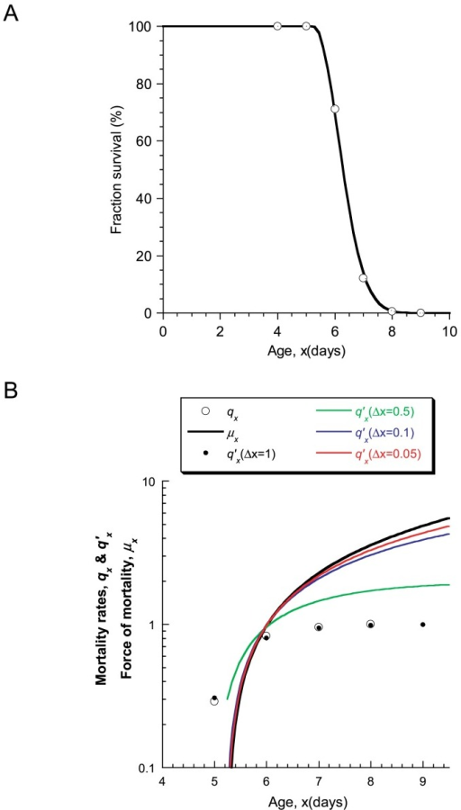 Biodemographic data of the mev-1;fer-15 double-mutant cohort at 25°C. (A) Survival of the mev-1;fer-15 double mutant (360 animals, summed data from three trials) exposed to 90% oxygen concentration from day 4. The raw data were fitted by the non-linear least-squares method with Eq. 4, whose fitting parameters were determined as t0 =5.25 and z=1.24. The bold black curve shows the fitting curve analyzed as a single mode. (B) Mortality rates of (A). The expected mortality rates qx′ from our model were calculated by substituting the fitting equation of survival determined at (A) into Eq. 1. Here, the interval time Δx in Eq. 1 was varied as 1.0 (filled circles), 0.5 (green line), 0.1 (blue line), and 0.05 (red line). The experimental qx and predicted qx ′ values are black circles and small black solid circles (Δx=1.0), respectively. The bold black curve represents the force of mortality calculated from Eq. 6.