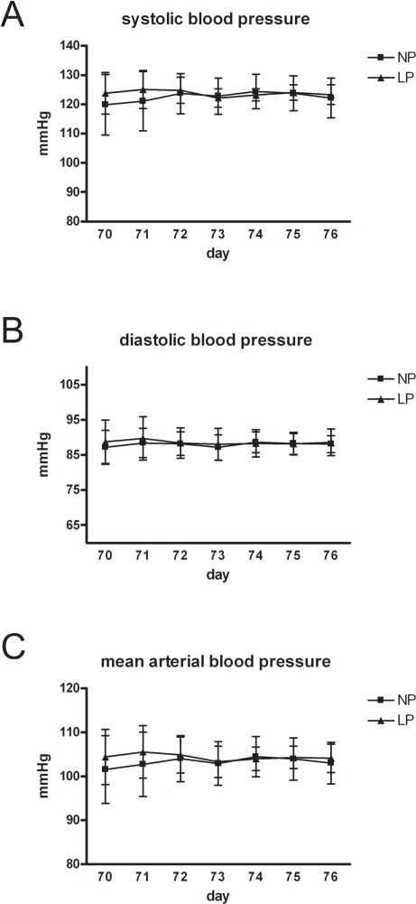 Telemetric blood pressure measurements.Systolic (A), diastolic (B) and mean arterial (C) blood pressure values of two IUGR-rats (LP) and two controls (NP) at the age of 70 days of life obtained by telemetric measurements for one week. Data are means ± sem.
