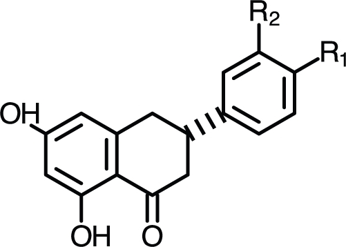 Flavanone chemical structure.Non-natural flavanone structures have functional groups attached to the B-ring in either the 4- (R1) or 3- (R2) position.