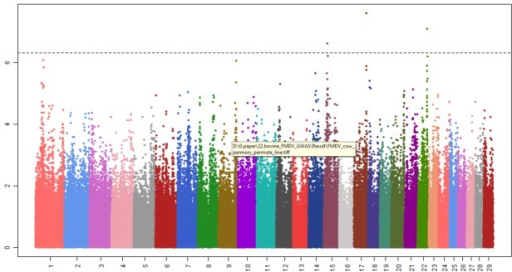 Manhattan plots showing the significant single nucleotide polymorphism (SNP) associated with the foot-and-mouth disease resistance. X-axis represents chromosome and Y-axis indicated −log10(p.adjust -value). Dots over the dotted line indicate significantly associated SNP.